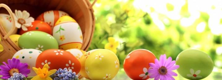 Pasqua15