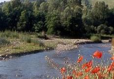 Parco Stirone